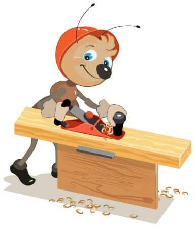 Ant clipart carpenter ant.  natural remedies how