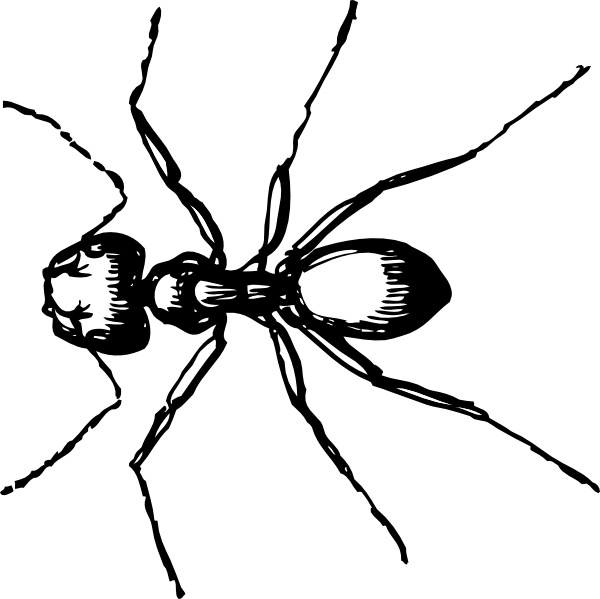 Ant clipart carpenter ant. Clip art free vector