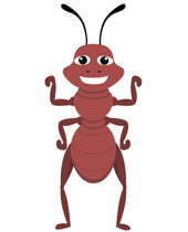 Ant clipart character. Search results for ants
