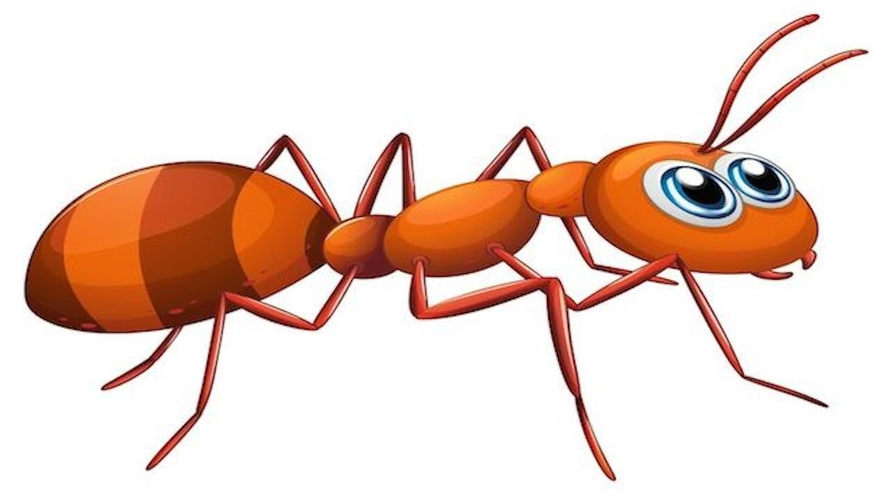 Ant clipart children's. Wanted pictures of ants