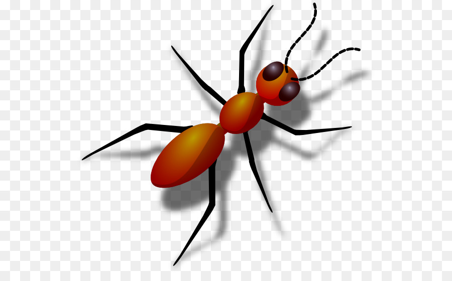 Clip art ants cliparts. Ant clipart clear background