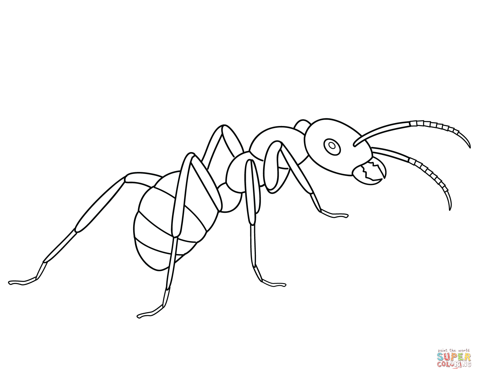 Coloring pages free ant. Ants clipart colour