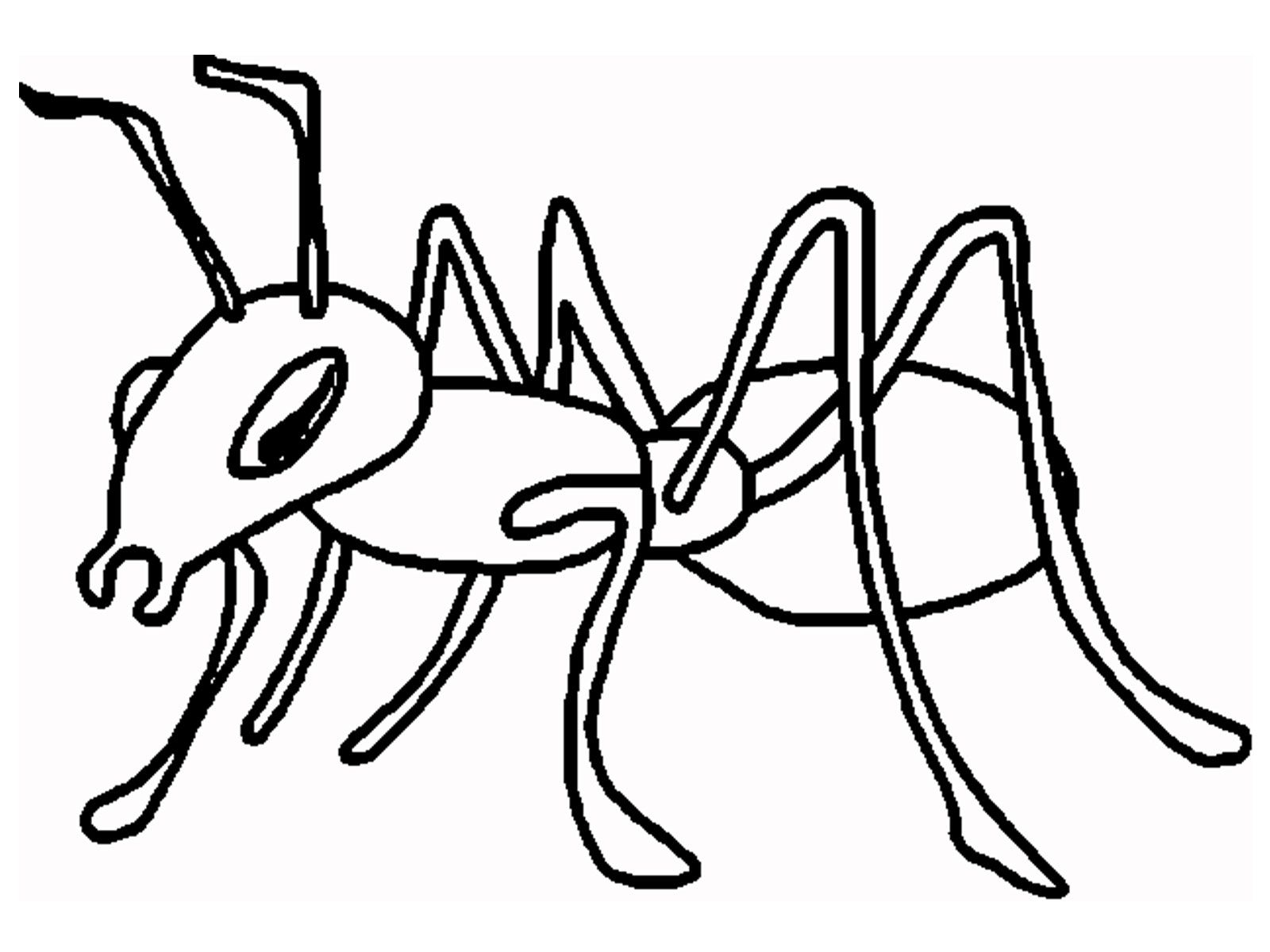 Ant coloring cartoon and. Ants clipart colouring page