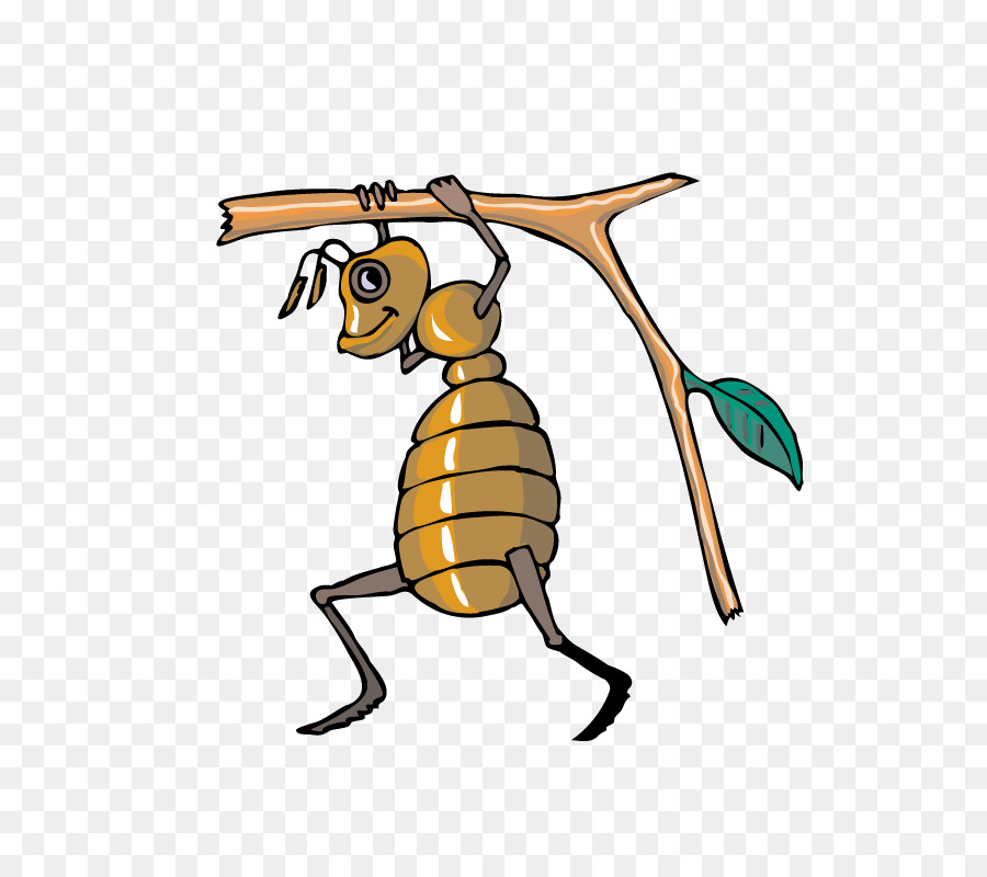 Honey bee ant clip. Ants clipart cooperation