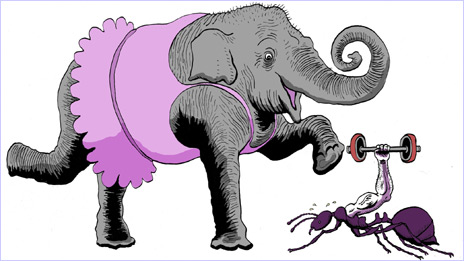 Ant clipart elephant. Why can t elephants