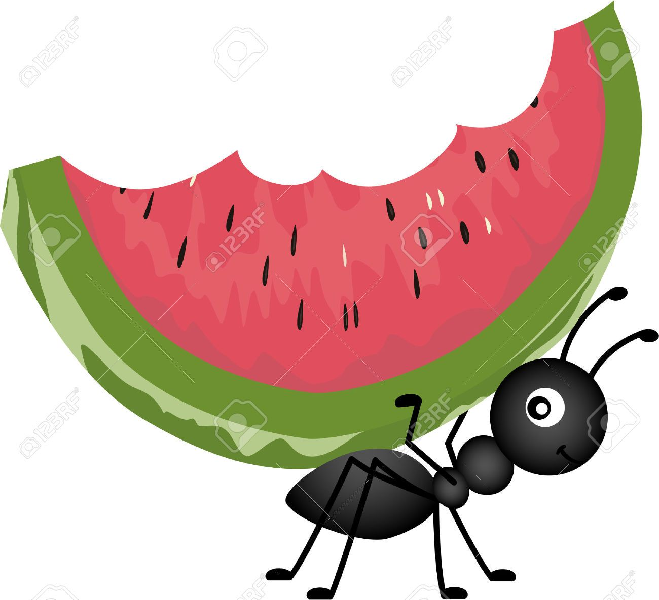 Picnic ant carrying watermelon. Ants clipart food