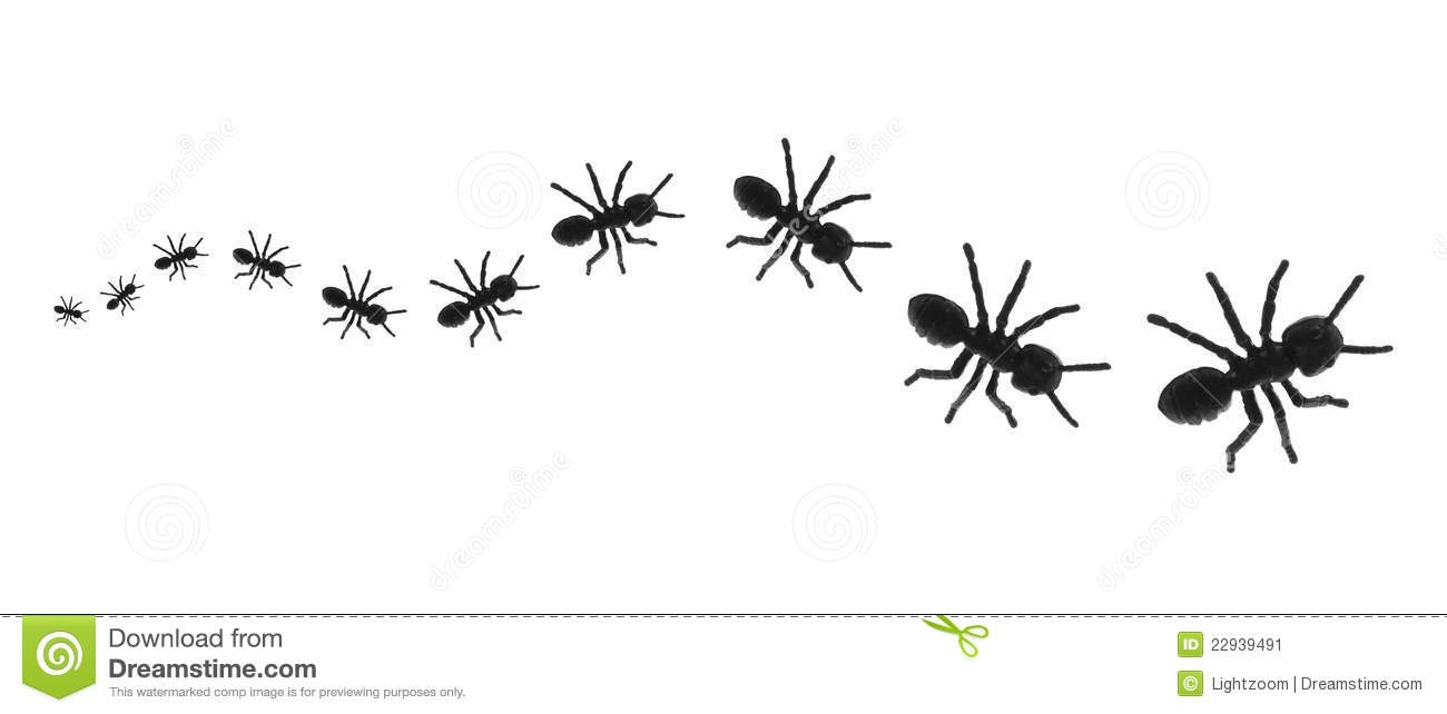 Ant clipart line. Of ants letters format