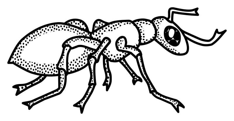 Line drawing at getdrawings. Clipart letters ant