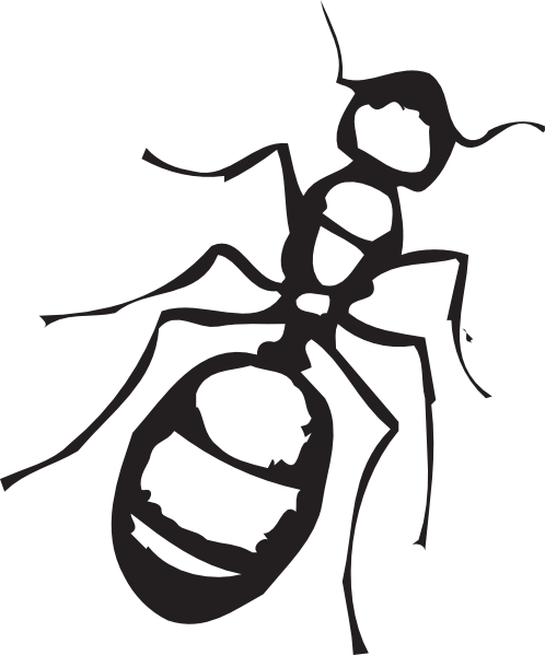 Pencil and in color. Ants clipart outline