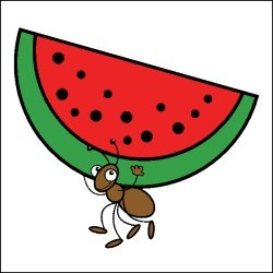 Watermelon clipart ant. Picnic ants