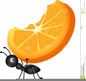 Ant clipart picnic. Free images at clker