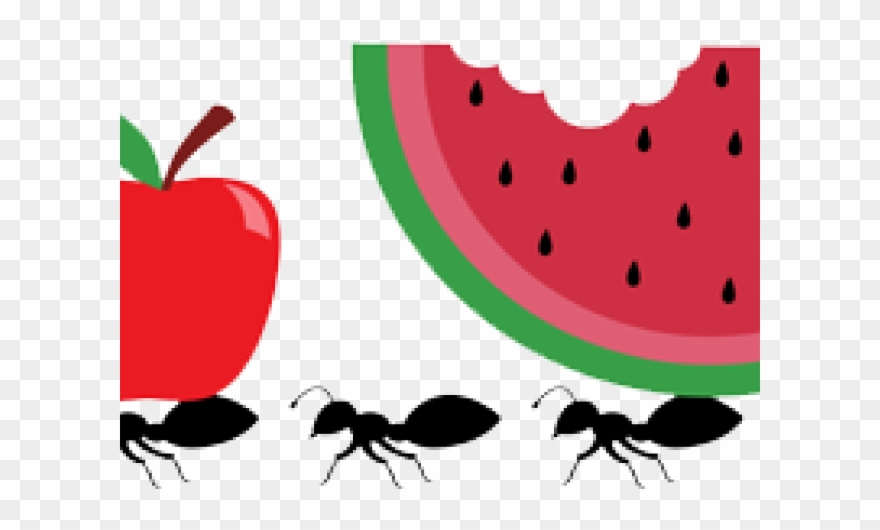Ants clipart picnic. Ant item png download