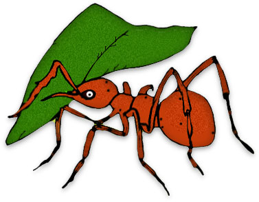 Leaf cutting ants . Ant clipart printable