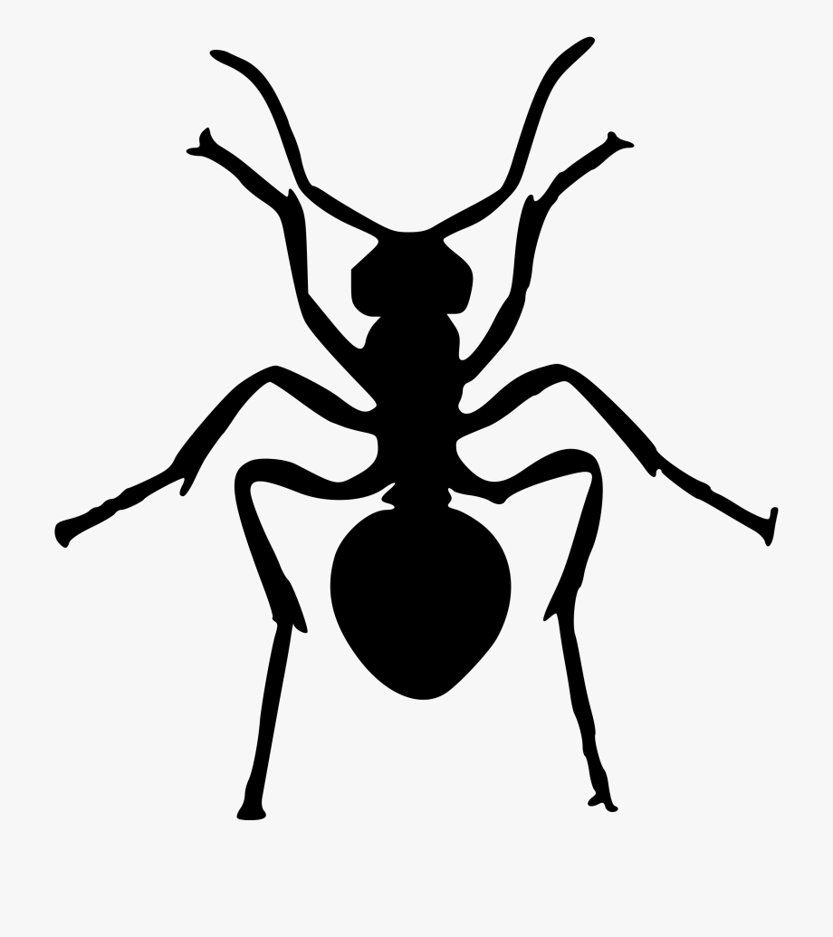 Ant clipart silhouette. Transparent