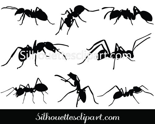 Vector graphics silhouettes and. Ant clipart silhouette