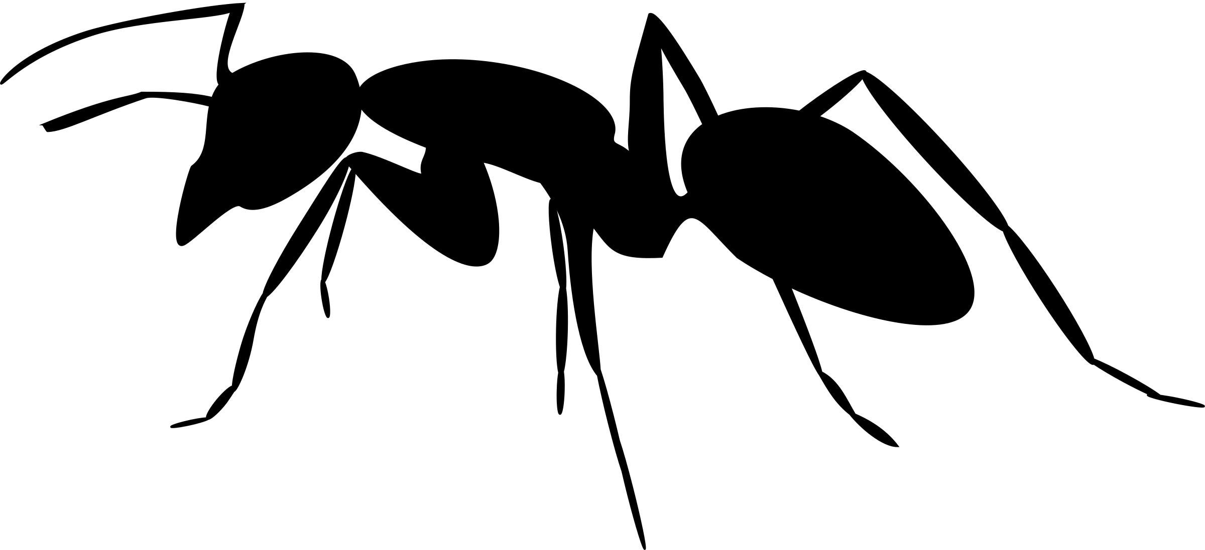 Ant clipart silhouette. Icons png free and