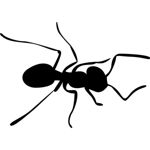 Ant cliparts of free. Ants clipart silhouette