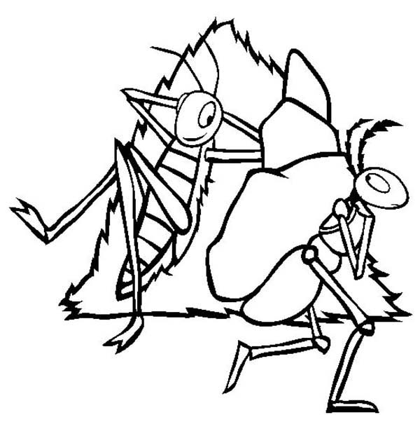 Ant line drawing at. Ants clipart sketch