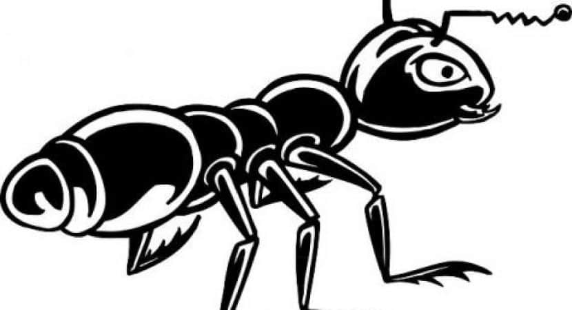 Ant clipart small ant. Scientifically proven black extract