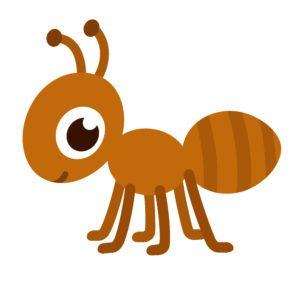 Ants orange stinger explore. Ant clipart strong