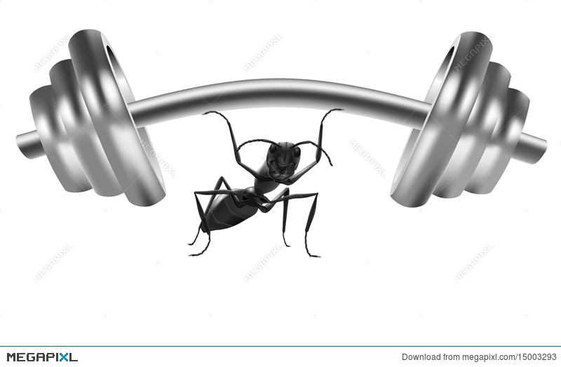 Free download clip art. Ant clipart strong