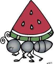 Ant clipart summer picnic. Pin by nicole reyes