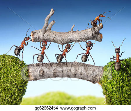 Drawing team of ants. Ant clipart teamwork