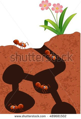 Ants pencil and in. Ant clipart underground