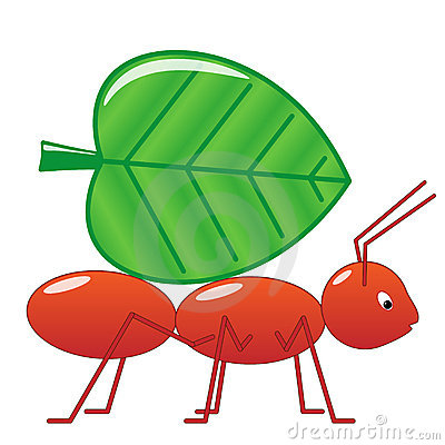 Ant clipart work.  collection of working