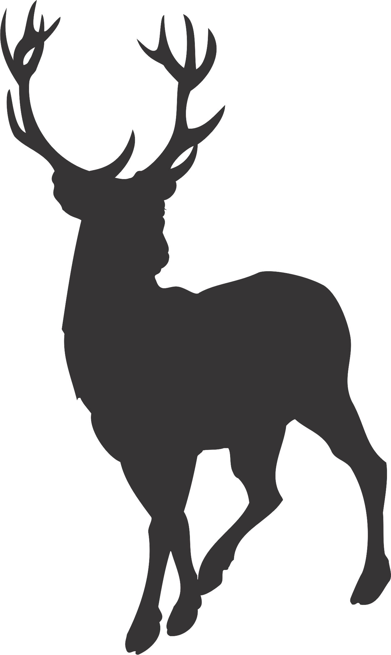 Antler clipart baby deer. Free download stag silhouette