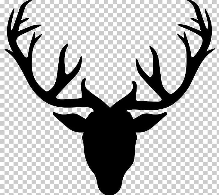 Antler clipart black and white. Roe deer drawing png