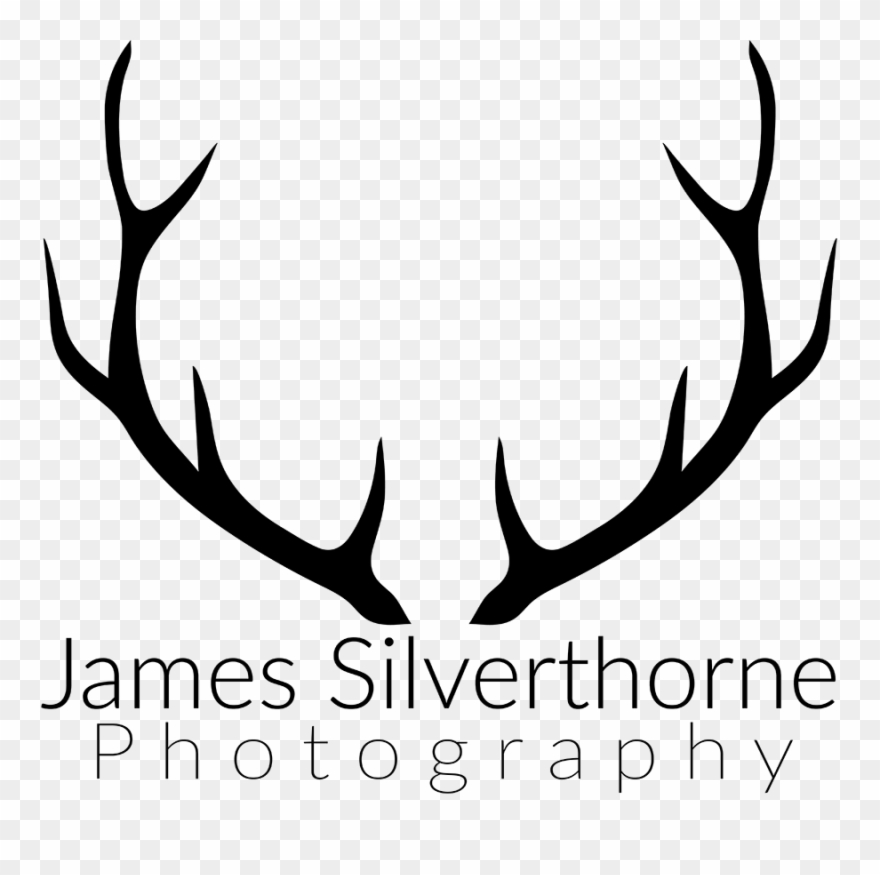 Deer png download . Antlers clipart black and white