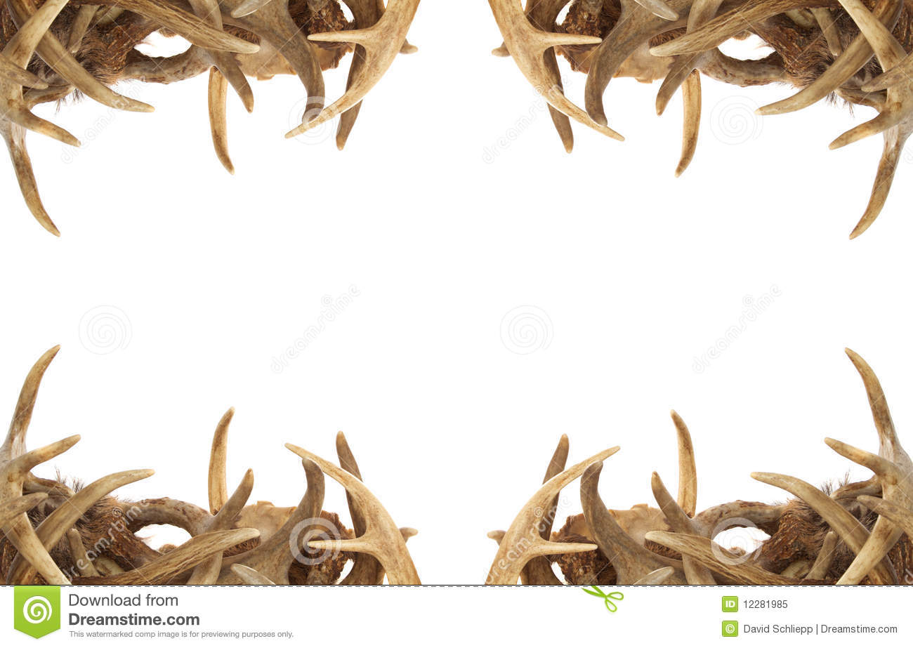 Deer antler . Hunting clipart border
