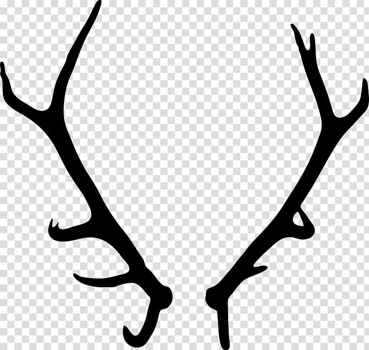 Antlers clipart deer horn. Antler transparent background png