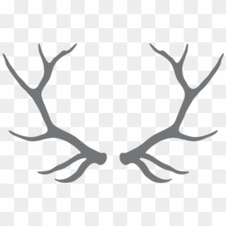 Antlers png images free. Antler clipart deer horn