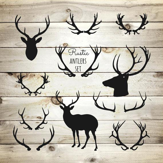 Antlers clip arts related. Antler clipart deer rack