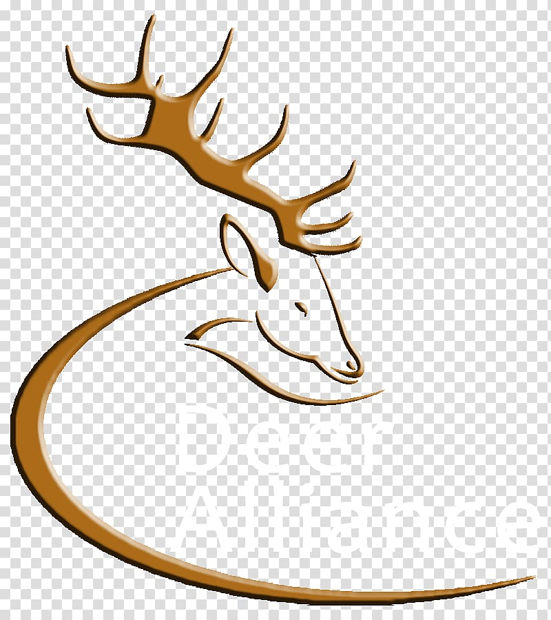 Deer wildlife horn transparent. Antler clipart elk
