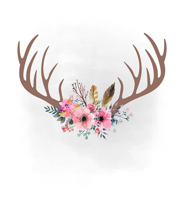 Pink floral antlers svg. Antler clipart feather