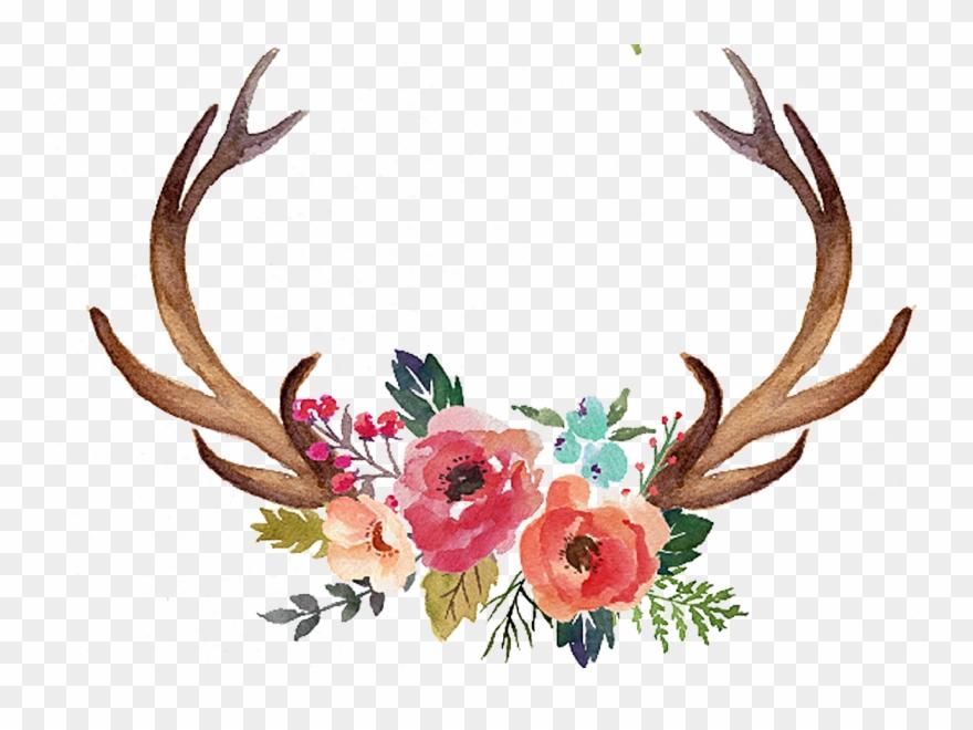 Freeuse stock deer antler. Antlers clipart simple