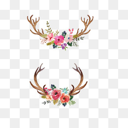Antlers clipart flower crown. Png vectors psd and