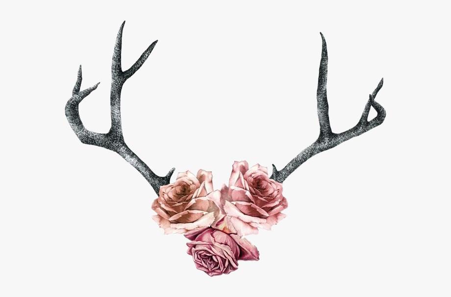 Antler clipart flower crown. Rose roses antlers pink