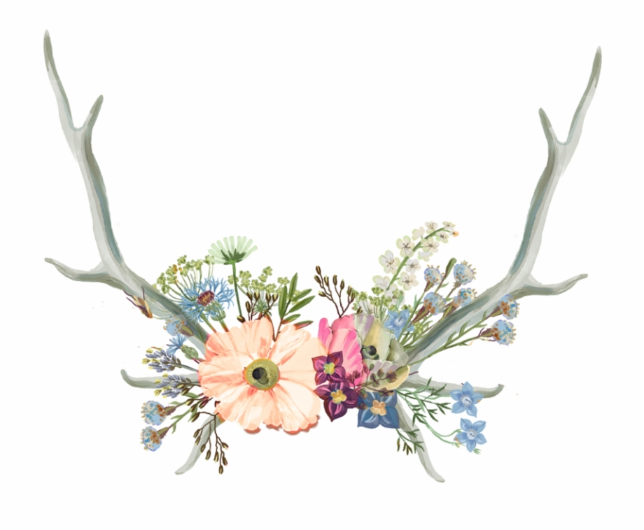 Aesthetic png . Antler clipart flower crown