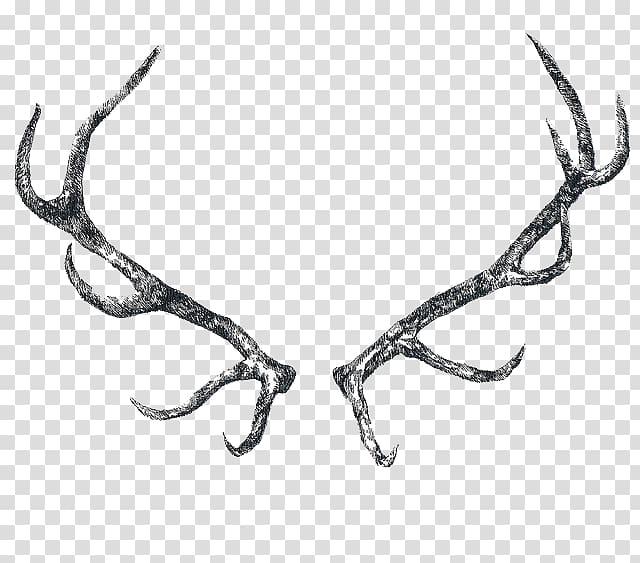 Reindeer elk horn transparent. Antler clipart raindeer