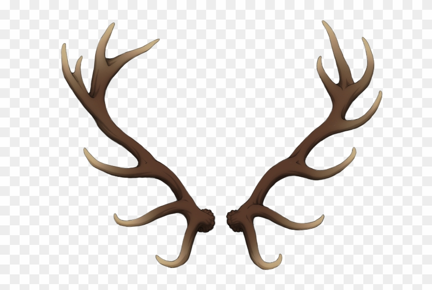 Antlers clipart raindeer. Freeuse stock transparent deer