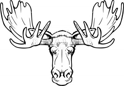 Head black and white. Moose clipart moose rack