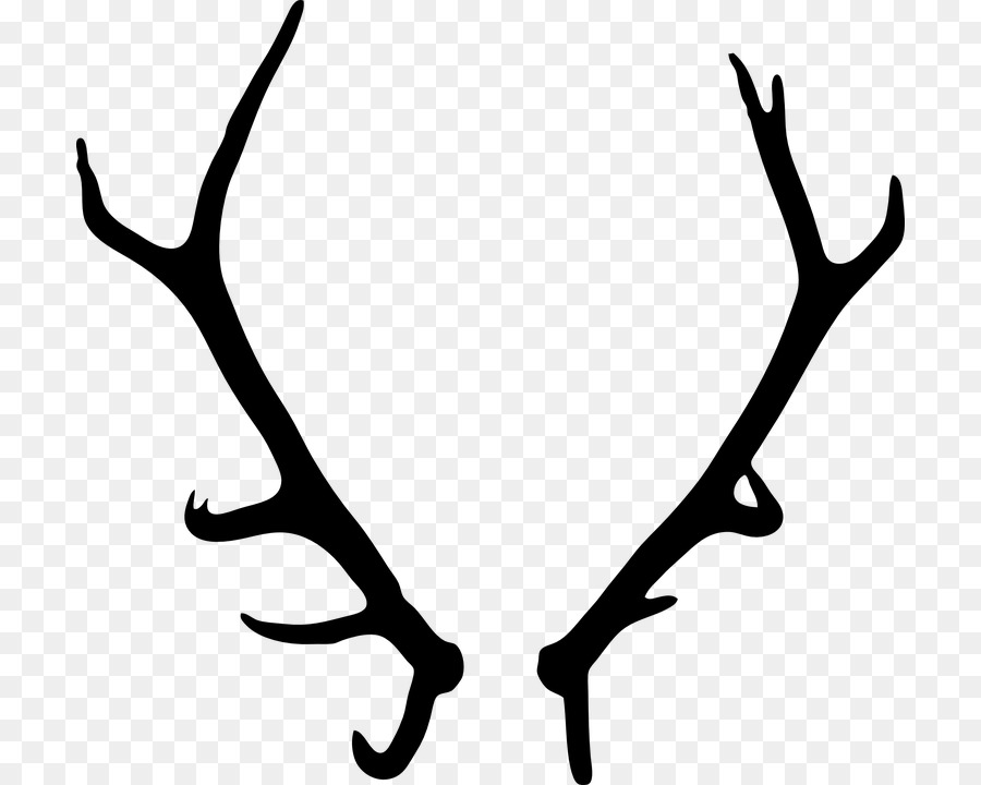 Free deer antlers download. Antler clipart transparent background