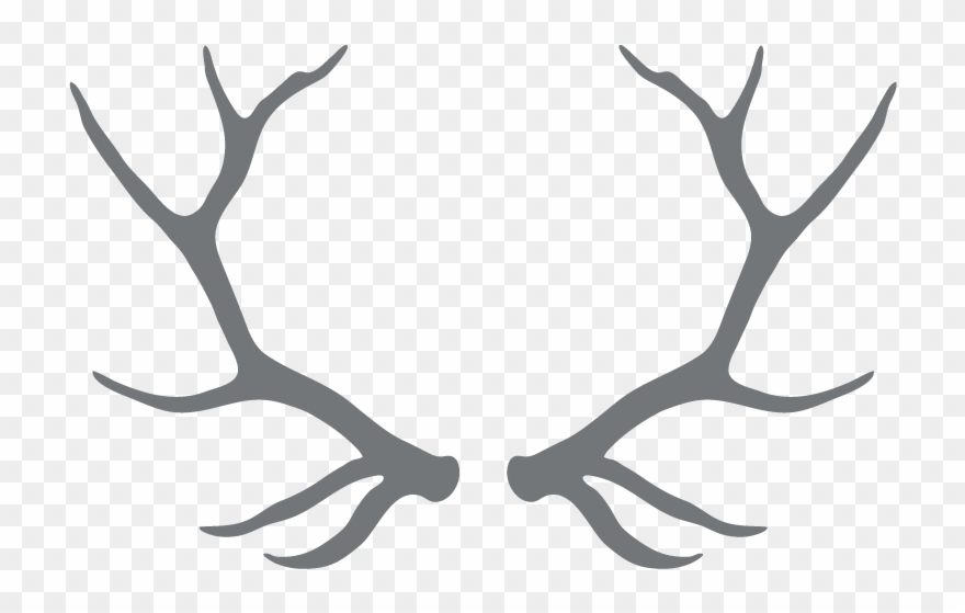 Free download antlers black. Antler clipart transparent background