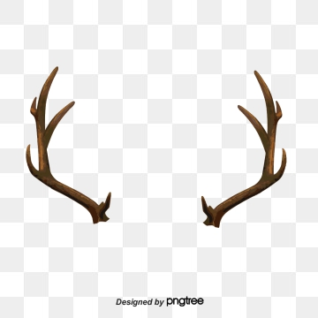 Antlers clipart vector. Brown png psd and
