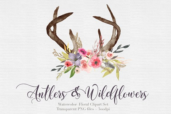 Flowers illustrations creative market. Antlers clipart watercolor