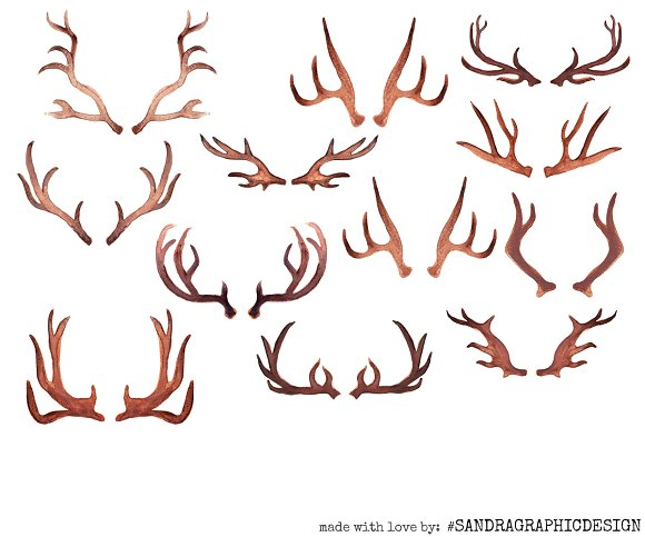 Antlers and flowers clip. Antler clipart watercolor
